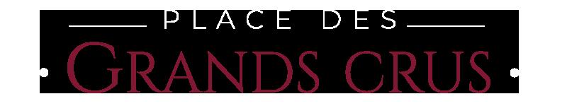 PDGC logo blanc